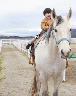 上手に乗馬 - No.1181477