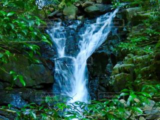 白糸の滝の写真・画像素材[2382108]