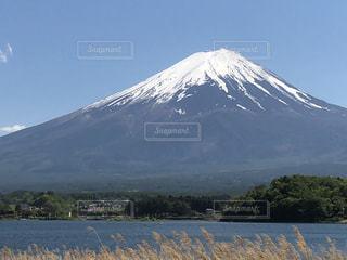 富士山 河口湖の写真・画像素材[1175035]