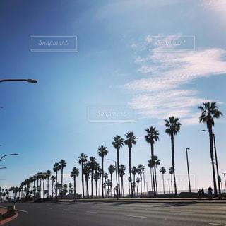 アメリカ西海岸の街並み♪の写真・画像素材[1173374]