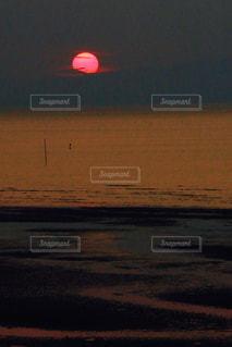 浜辺でフリスビーに沈む夕日の写真・画像素材[1173868]