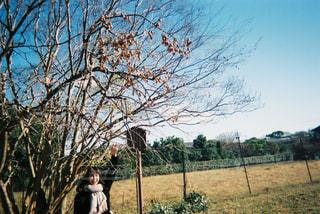 木の隣に立っている人の写真・画像素材[1173747]