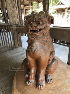 土佐神社の狛犬さんですの写真・画像素材[2106998]