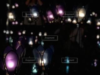 光の点灯の写真・画像素材[2559865]