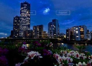 水とバック グラウンドで市一杯の花瓶の写真・画像素材[1179460]