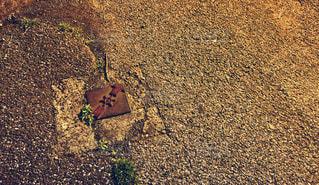 地面の写真・画像素材[1179473]