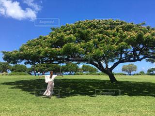 緑豊かな緑のフィールドに立っている人の写真・画像素材[1187167]