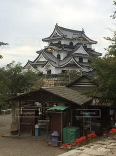 彦根城の写真・画像素材[1178859]