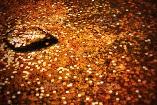 日本のコインの写真・画像素材[1180630]
