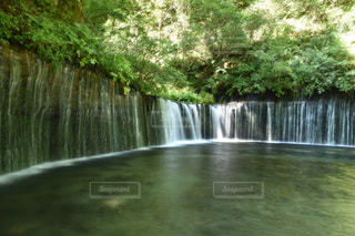 白糸の滝の写真・画像素材[1180052]