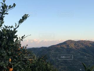 背景の山と木の写真・画像素材[1180199]