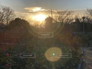 風車の朝日の写真・画像素材[1180610]