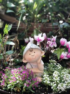 フラワー ガーデンの写真・画像素材[1180798]