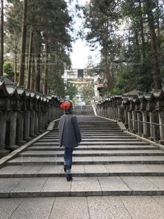 神社の写真・画像素材[1180804]