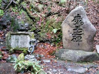 岩の上に座っているクマの像の写真・画像素材[1181375]