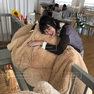 おっきなクマのぬいぐるみカフェの写真・画像素材[2959089]