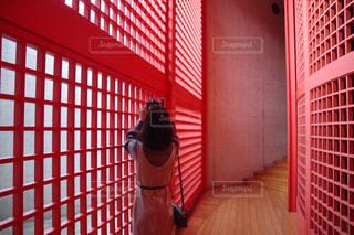 赤い建物のクローズアップの写真・画像素材[2994422]