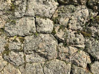 近くの石垣2の写真・画像素材[1181955]