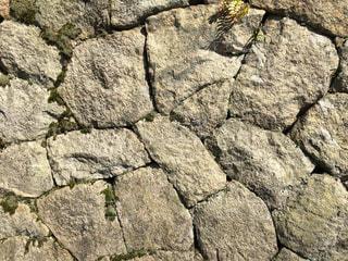 近くの石垣1の写真・画像素材[1181956]