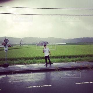 田舎の田んぼ道の写真・画像素材[1202859]