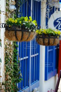 テーブルの上の花の花瓶の写真・画像素材[1183102]