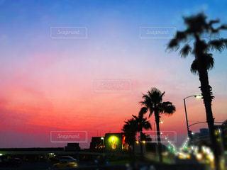 夕闇が迫る夏の夕暮れの写真・画像素材[1188550]