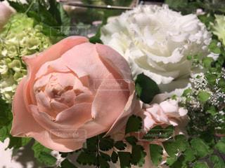 近くの花のアップの写真・画像素材[1188587]
