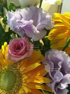 夏の花束の写真・画像素材[1411015]