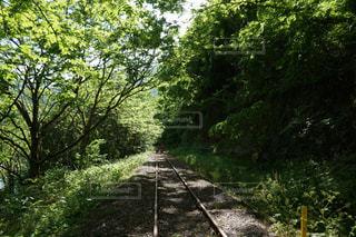 線路は。。の写真・画像素材[1729992]