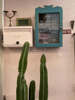 カフェの外観の写真・画像素材[2975974]