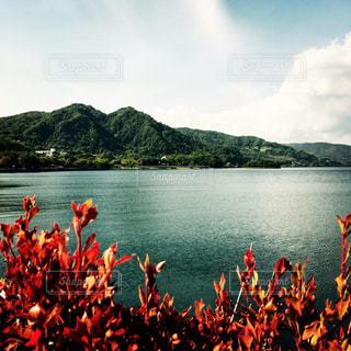 北海道  洞爺湖の写真・画像素材[1188153]