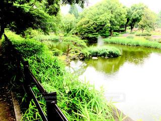 日比谷公園の風景の写真・画像素材[1274738]