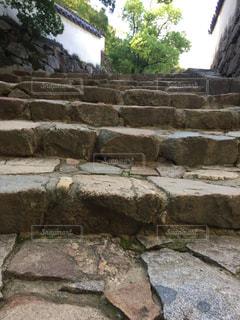 石畳の道の写真・画像素材[1292621]