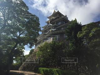 岡山城の写真・画像素材[1292626]