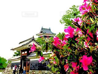 城と花と空の写真・画像素材[1380248]