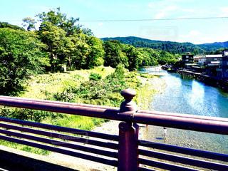 五十鈴川の写真・画像素材[1384336]