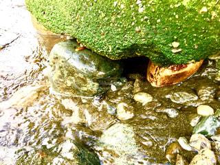 海岸の小石の写真・画像素材[1427469]