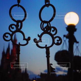夜ライトアップ サインの写真・画像素材[1185148]