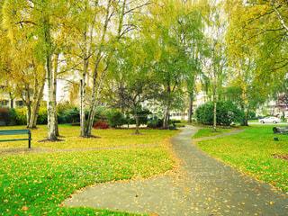 公園の写真・画像素材[292695]