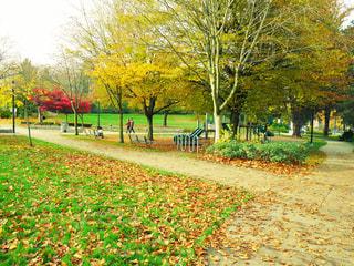 公園 - No.292707