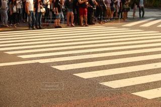 夏のスクランブル交差点の写真・画像素材[38522]