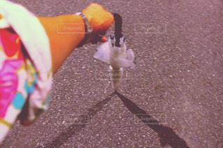 ビニール傘と影の写真・画像素材[237773]