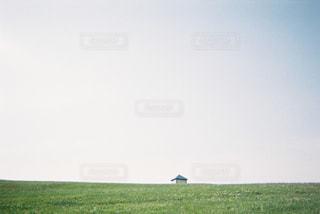 マザー牧場にて。芝生の小高い丘の写真・画像素材[1113845]