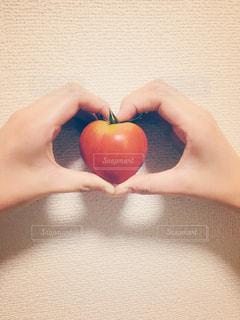 リンゴを持っている手 - No.1190034
