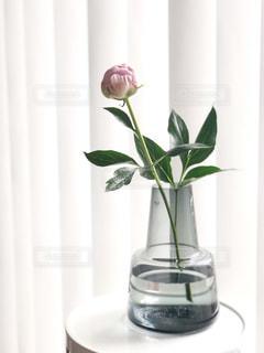 紫色の花一杯の花瓶の写真・画像素材[1245570]