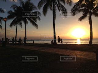ハワイのビーチサイドでの夕暮れの写真・画像素材[1186713]