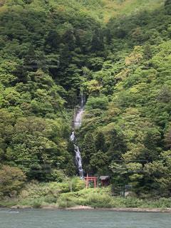 白糸の滝の写真・画像素材[1223182]