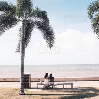 オーストラリアの海岸での写真・画像素材[1196941]