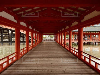 厳島神社の廊下の写真・画像素材[1198318]