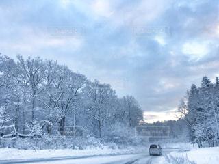 北海道の雪景色の写真・画像素材[1708088]